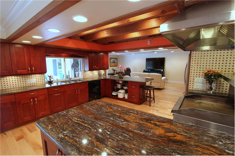 Exotic Brazilian Granite Countertops