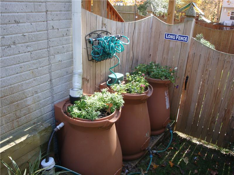 Rain barrel and gardens